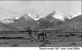 Tibetan_horseman